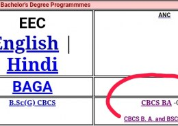 """When I go over to the Assignments page, I find CBCS BA – Old and CBCS BA and BSCANH – New. I'm new to IGNOU and my course is BAEGH (July 2020 session). Can someone explain to me the difference between this """"Old"""" and """"New""""?"""